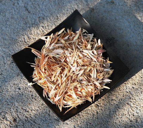 Thai Lemongrass / Zitronengras Tee, Close-up