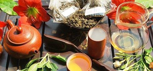Verkostung frischer Frühlings-Oolong-Tees Nordthailand 2014