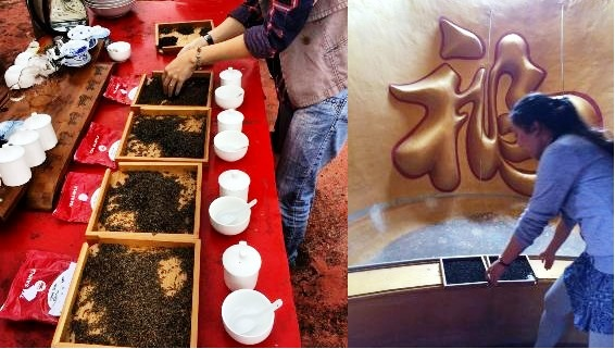 Mehr Teeverkostung in der Doi Mae Salong Tee-Schule