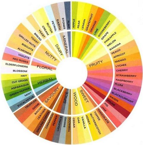 System zur Beschreibung des Geschmacks von Tee