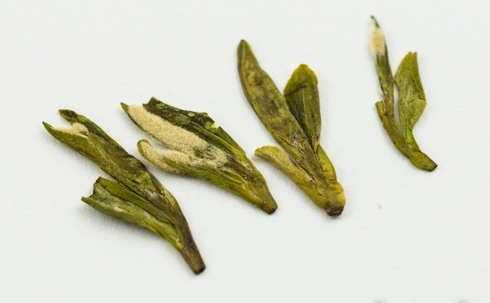 Characteristically pressed Long Jing green tea leaves: picking standard 1+ 2