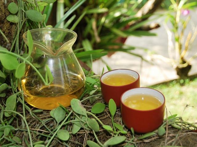 Bai Mu Dan Weißer Tee in Baum-Gong-Fu-Cha