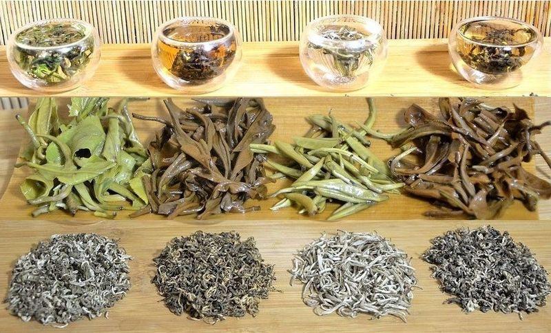 """Tee aus Vietnam - 4 Tees von mehr als 100 Jahren alten """"Snow Shan"""" Teebäumen in der Provinz Ha Giang, Vietnam: grüner Tee, schwarzer Tee, Vietnam Silver Needle, Pai Hao Vietnam Tee"""