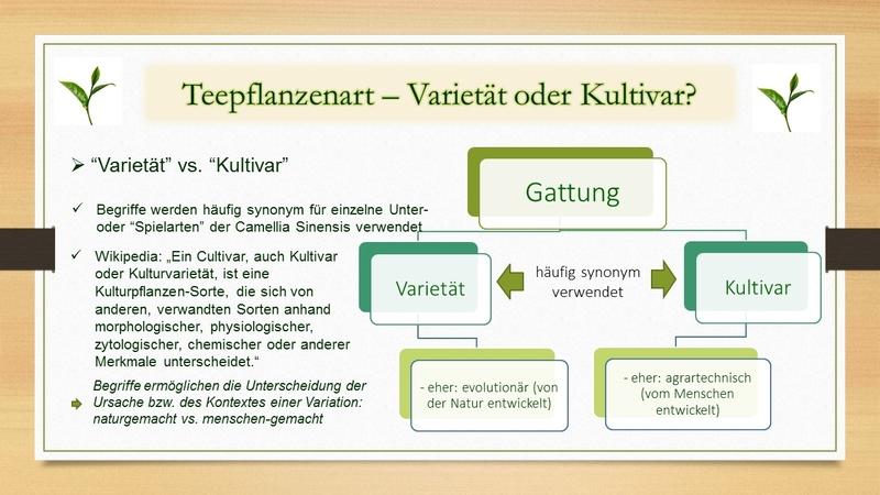 Verbreitung der Teepflanze - Unterarten der Teepflanze - Varietäten und Kultivare