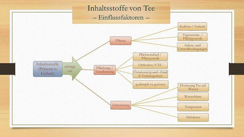 Inhaltsstoffe von Tee, Einflussfaktoren - Schaubild