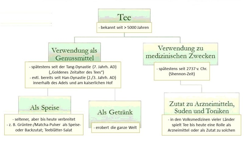 Schaubild : Die Entdeckung des Tees - Verwendung zu medizinischen Zwecken / Verwendung zu Genusszwecken