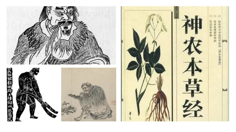 Shennong depictions as herbal researcher and mythical ancient farmer / Shennong Beng Cao Jing