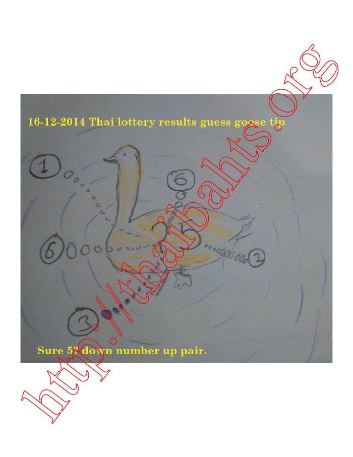 16-12-2014 Thai lottery results guess goose
