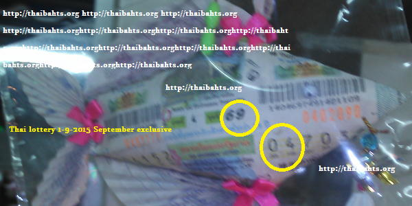 lottery fish for sept 1 2015 thai lottery