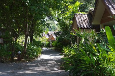 thai-house-beach-resort-ko-lanta-gallery-2018-35a