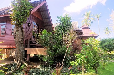 thai-house-beach-resort-koh-lanta-gallery-2019-20