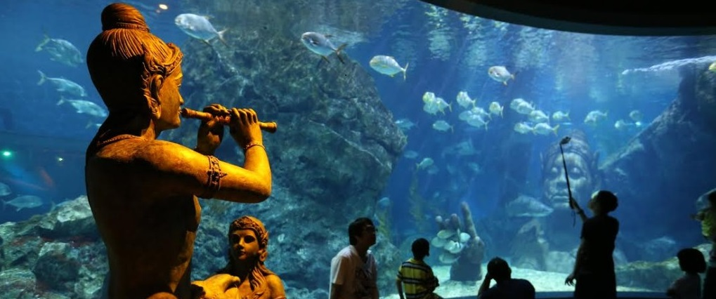 Sealife world bangkok attractions