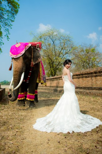 Cherlyn and Ben's Ayutthaya Elephant Village pre-wedding (prenuptial, engagement session) in Ayutthaya, Thailand. Ayutthaya Elephant Village_Ayutthaya_wedding_photographer_Cherlyn and Ben_2199.TIF