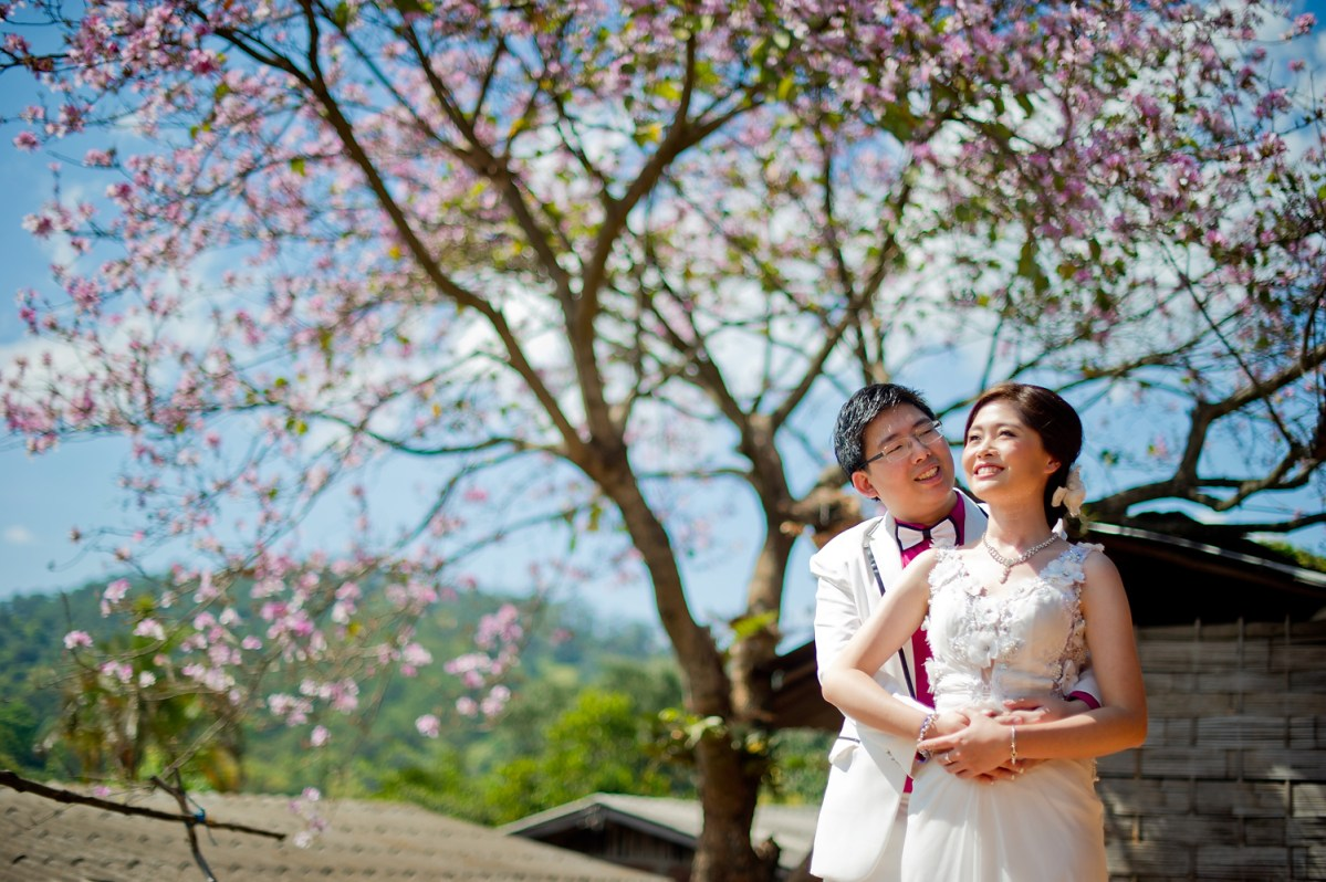 Karen & Billy's Pre-Wedding in Chiang Mai Thailand | Doi Suthep - Pui National Park - Wiang Kum Kam - Khum Phaya Resort