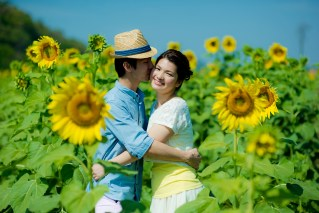 Yuen and Chan's Sunflower Field pre-wedding (prenuptial, engagement session) in Saraburi, Thailand. Sunflower Field_Saraburi_wedding_photographer_Yuen and Chan_2000.TIF