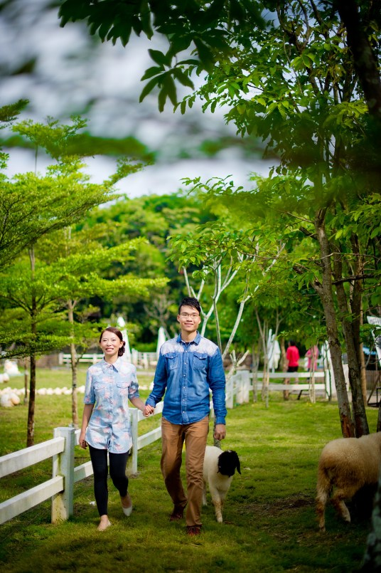 Jill and Daniel's Sheep Land Khao Yai pre-wedding (prenuptial, engagement session) in Nakhon Ratchasima, Thailand. Sheep Land Khao Yai_Nakhon Ratchasima_wedding_photographer_Jill and Daniel_33.TIF