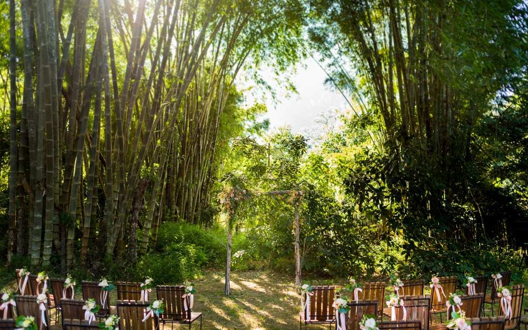 Preview: Chiang Dao Nest 1 Wedding