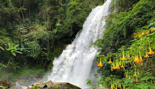 ドイインタノン トレッキング :チェンマイで大自然を満喫