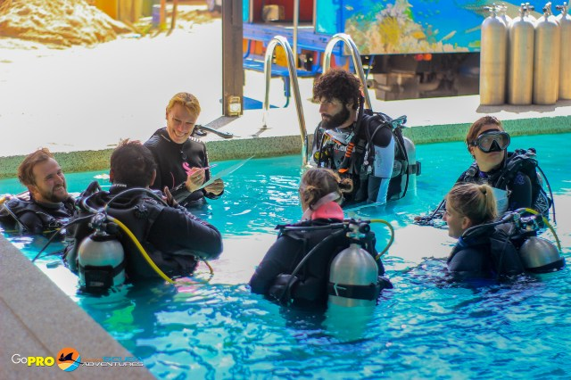 PADI Open Water Scuba Instructor training in the pool