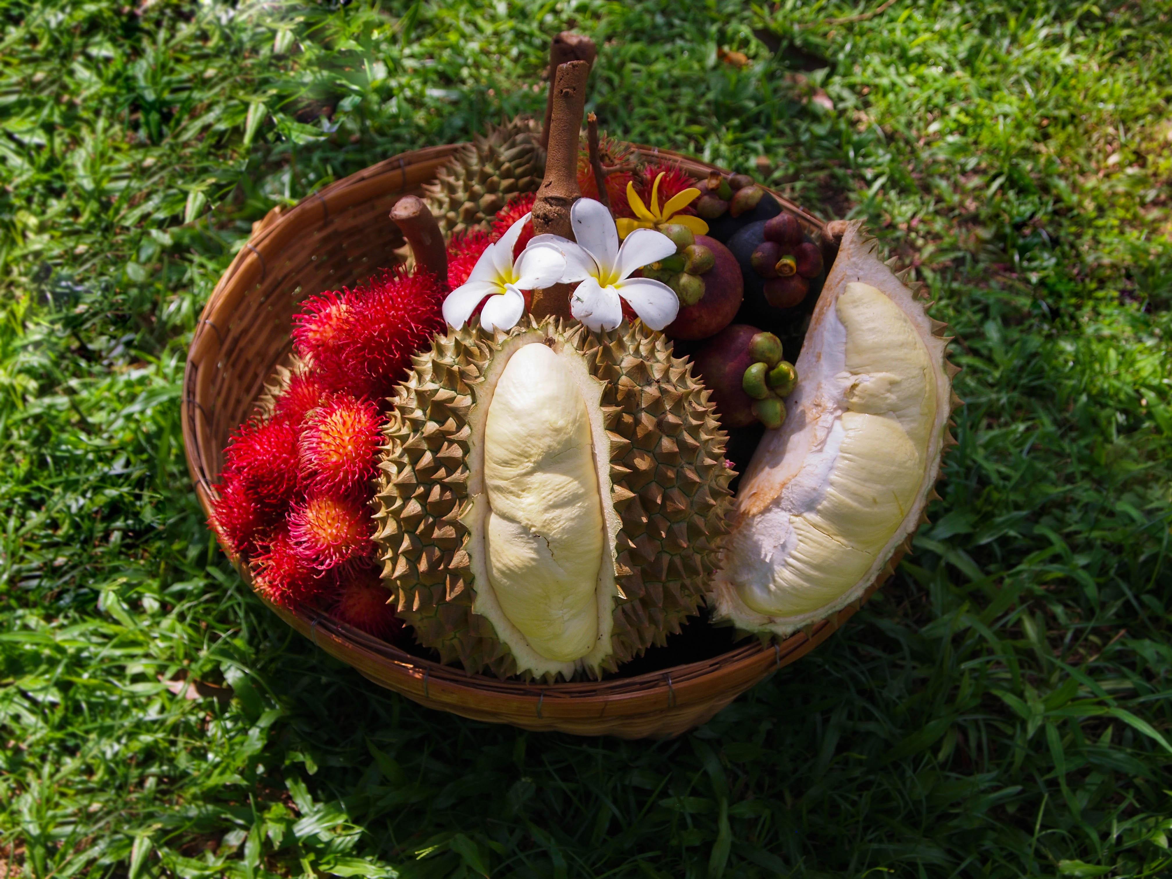 Fruits - Souvenirs of Rayong Thailand