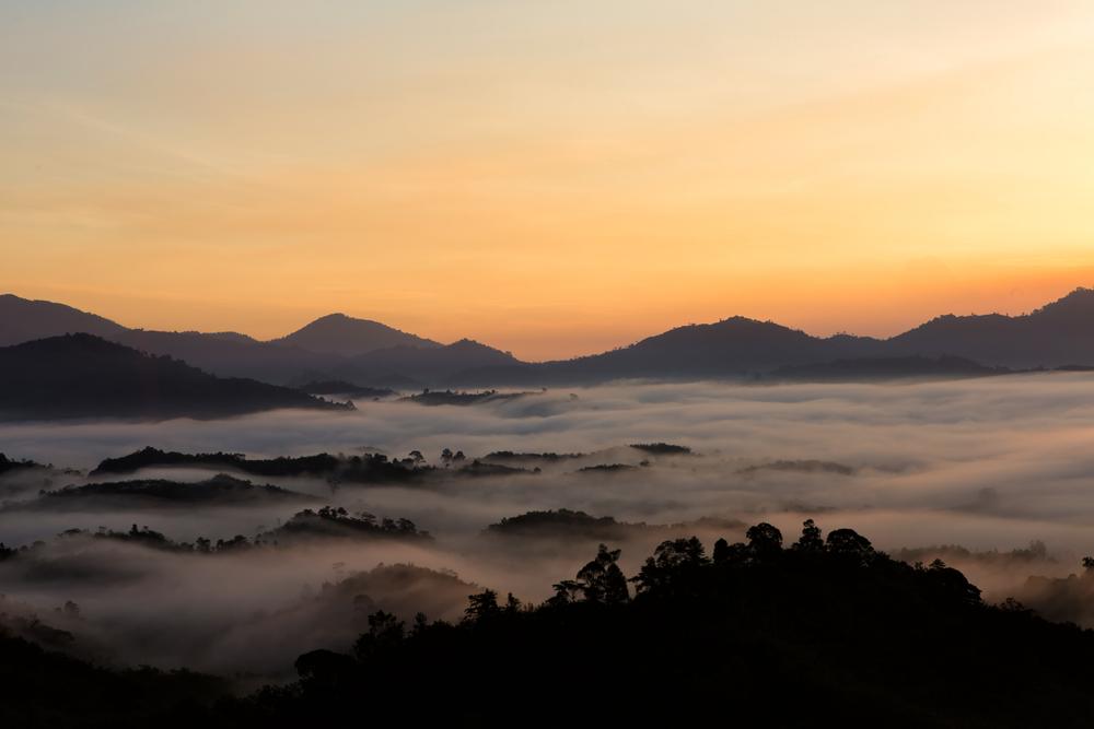Sightseeing Spot called Phu Sala (จุดชมวิวภูศาลา)