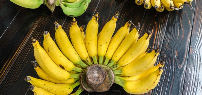 Lebmuenang Banana (กล้วยเล็บมือนาง)