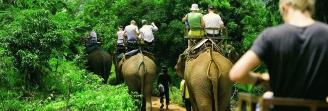 экскурсии на слонах талианд