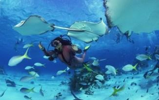 погрузиться с аквалангами в Паттайе2