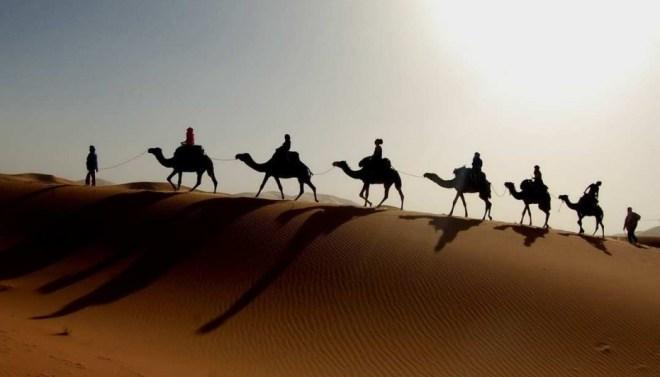 кскурсии из отеля - Тунис