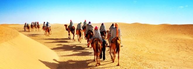 Экскурсии в Тунисе на любой бюджет