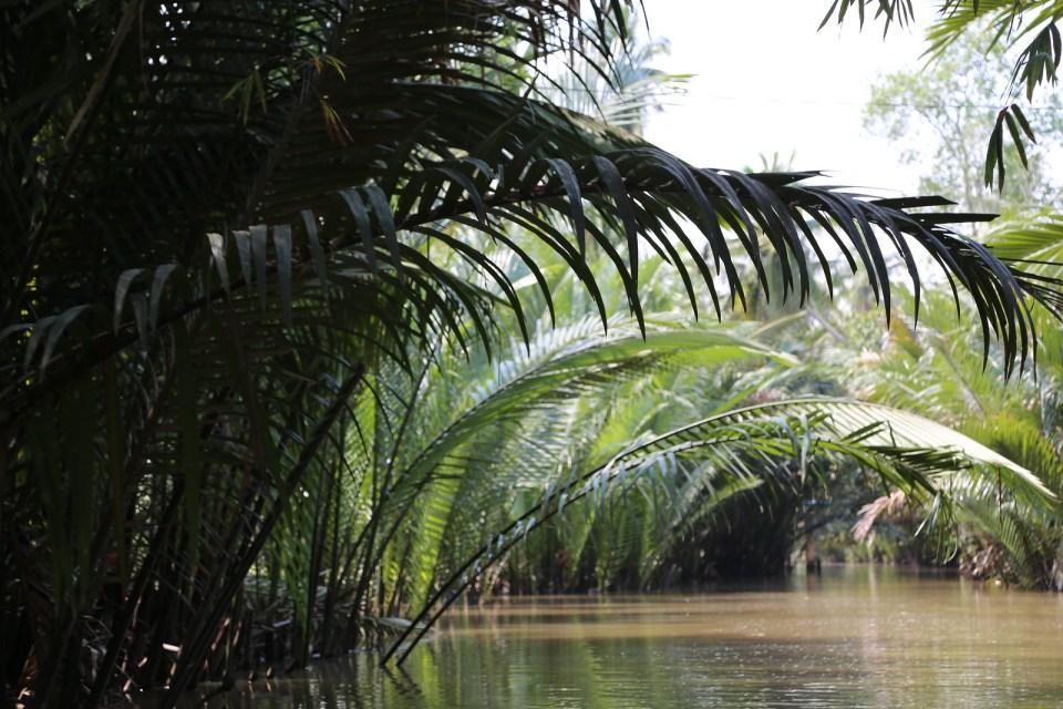 Nai Bang delta