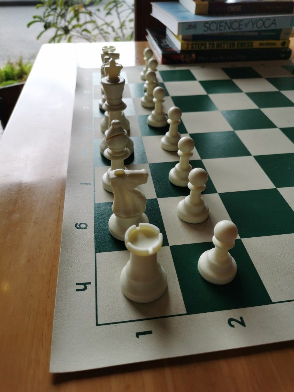 A chessboard in a cafe called Into the Woods.