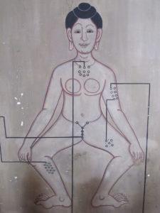 Wat Po Female Chart