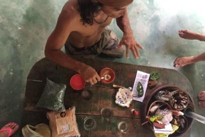 Amazônia que Cura