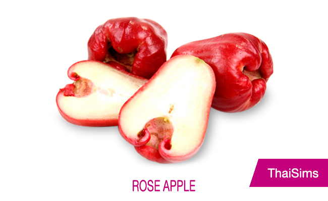 Thai Rose Apple thailand fruit thaisims