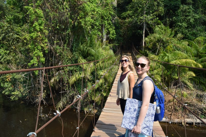 Outside from inside: A dreamy day safari in Khao Yai 4