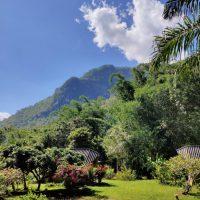 The Mae Salong loop: An easy Northern Thailand road trip