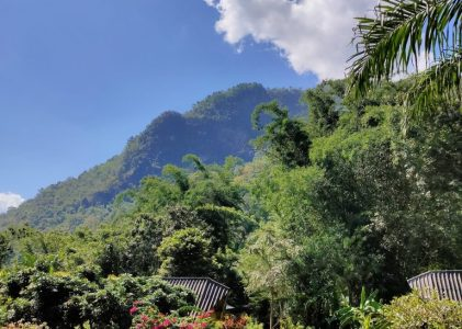 The Mae Salong loop: An easy Northern Thailand road trip