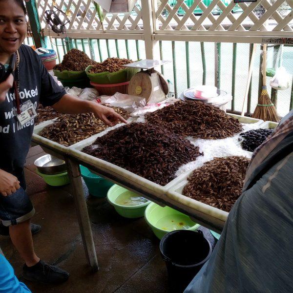 insects at khlong toei market bangkok