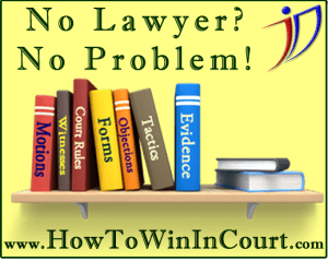 How To Win In Court