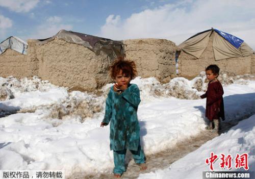 阿富汗难民在伊朗出车祸 造成20人遇难10人受伤