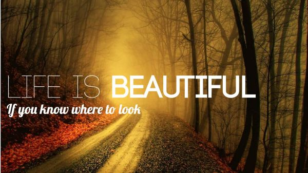 Life is Beautiful   Traveling Around the World