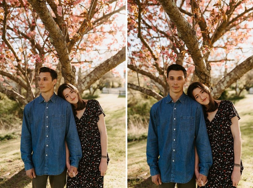 Couple holding hands underneath tree