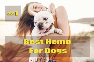 Best Hemp for dogs