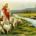Chúa Chăn Nuôi Tôi 2 – Nguyễn Hồng Ân