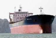 Vận tải biển lỗ gần 500 tỉ đồng