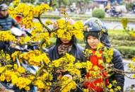 Chợ hoa xuân 'siêu to' ở Hải Phòng nhộn nhịp ngày giáp tết