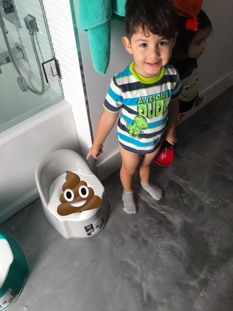 Potty Training Struggles and Tips