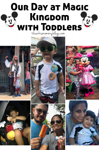 Magic Kingdom with Toddlers