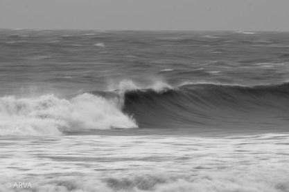 9 - Mario Romero - Local Lens